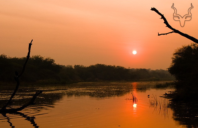 Photo de Lake Panic, Kruger National Parc